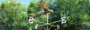 Buzzard weathervane