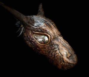 portrait of a copper dragons Head